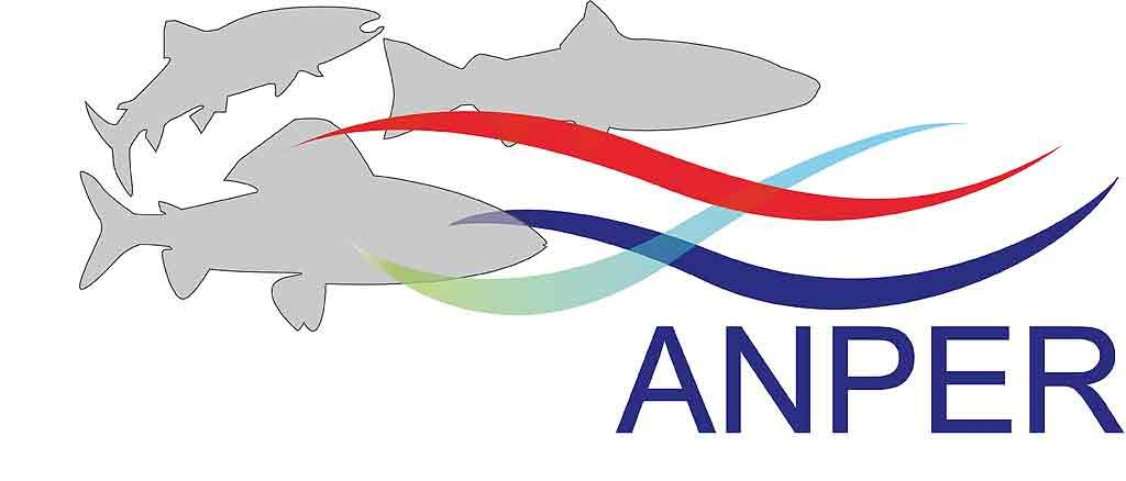 Logo-poissons