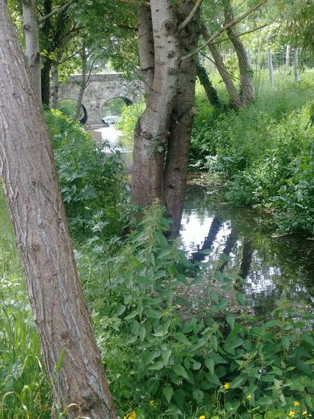 rivière naturelle