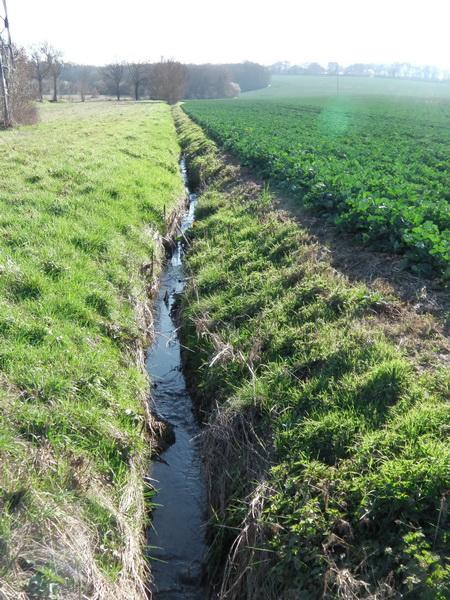 ruisseau de Ferrier
