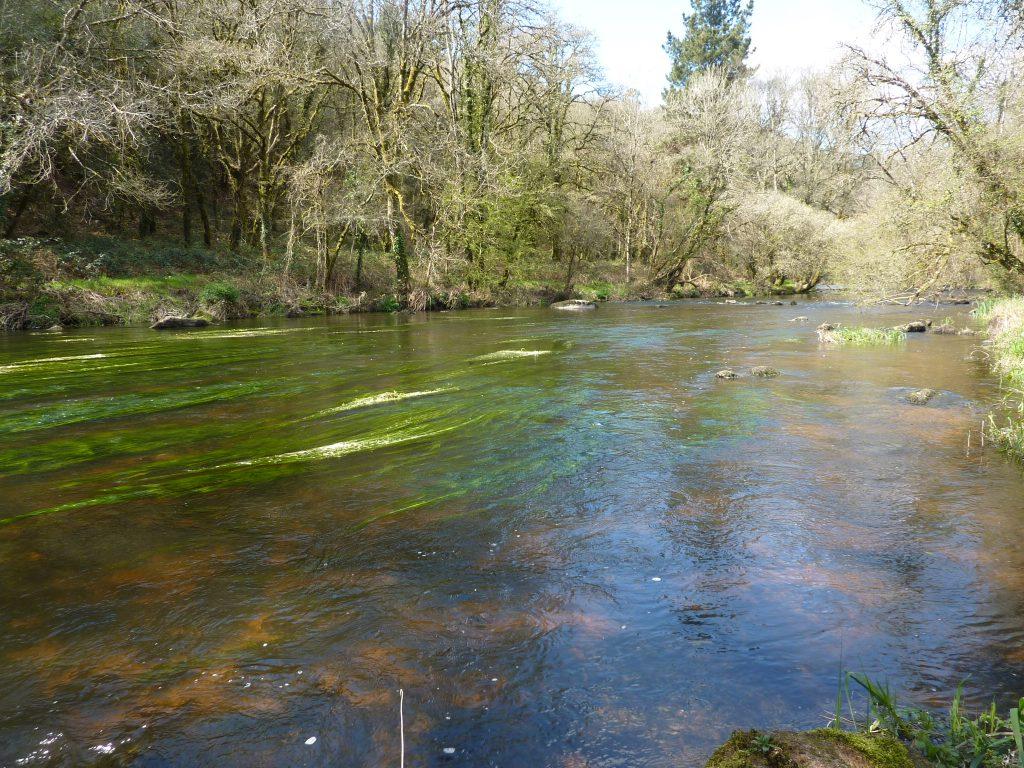 Rivière Le Sorff